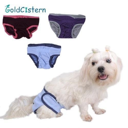 Calzoncitos Para Perro Cachorro - Talla S