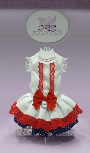 Hermoso vestido mascota blanco, lace rojo y fondo azul