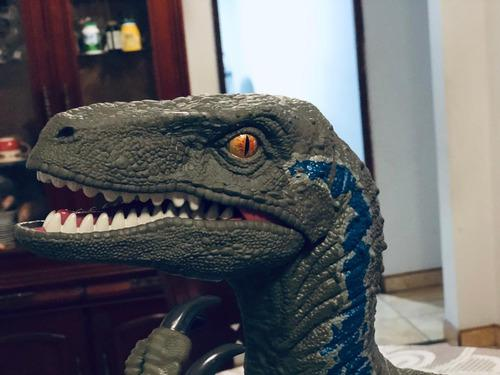 Jurassic world blue colossal a provincia