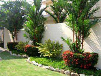 Servicios generales de jardineria todo lima jardinero