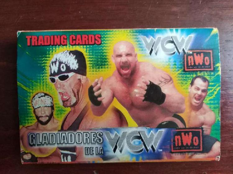 Card's wcw de los años 90's
