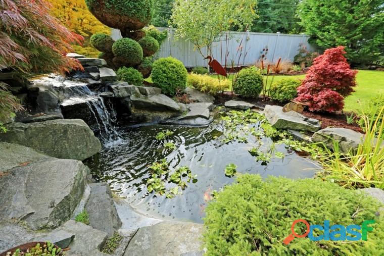Estanques para peces, estanques para interiores, estanques naturales, estanques de agua