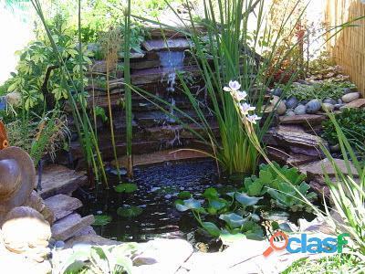 estanques para peces, estanques para interiores, estanques naturales, estanques de agua 1