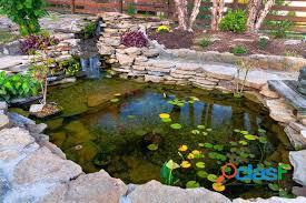estanques para peces, estanques para interiores, estanques naturales, estanques de agua 2