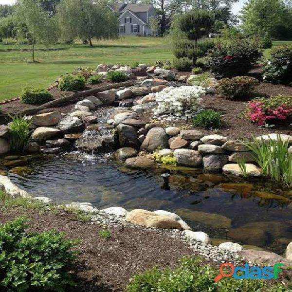 estanques para peces, estanques para interiores, estanques naturales, estanques de agua 3