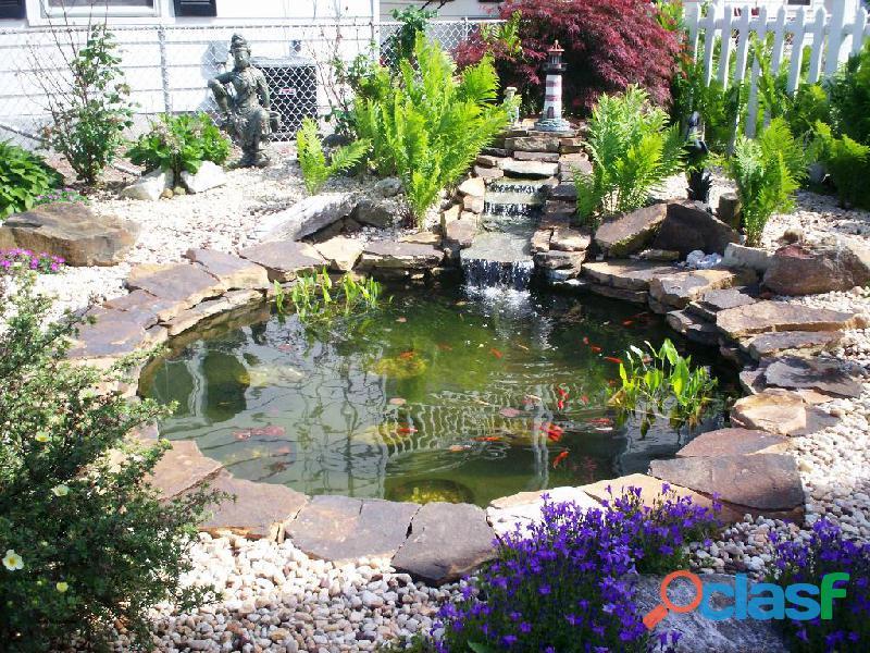 estanques para peces, estanques para interiores, estanques naturales, estanques de agua 4