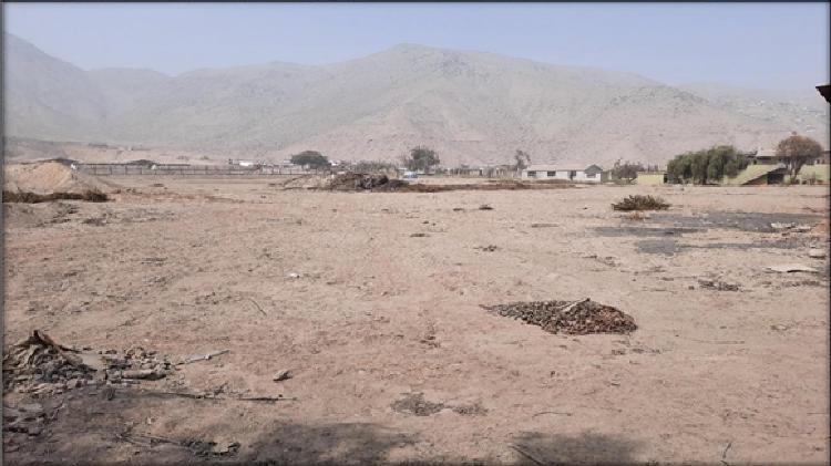 Alquiler de terreno industrial t5 10271mts, huachipa