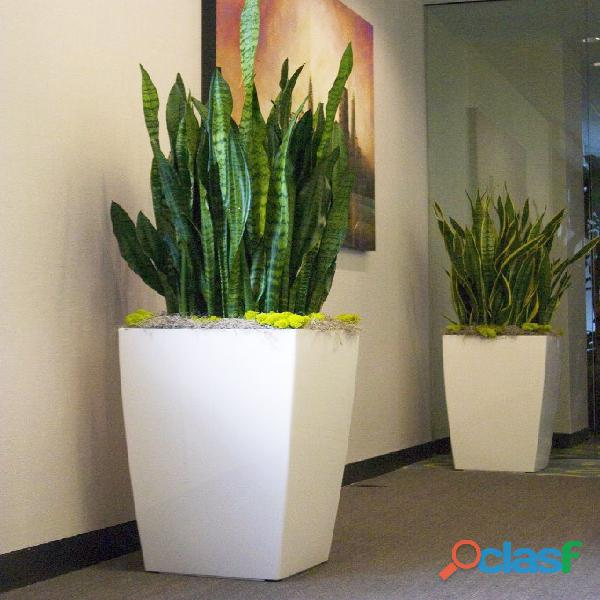 macetas decorativas, macetas decorativas para interiores, plantas para interiores 16
