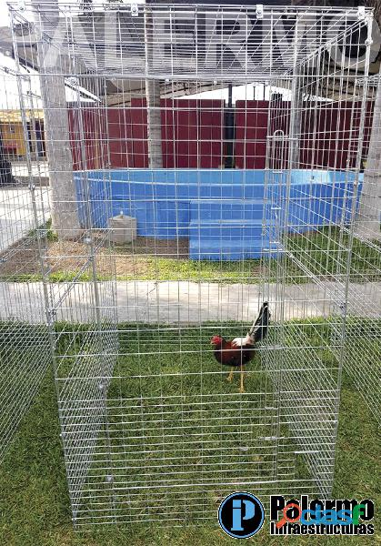 Voladeros desarmables para gallos