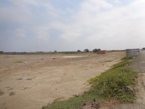 Venta de amplio terreno en Santa Maria - Lambayeque