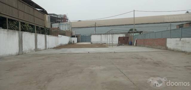 Alquiler de local para taller/almacen 1250 mts comas